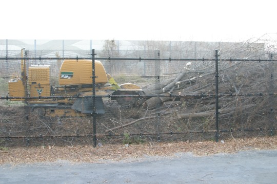 Clear cutting for Metrolinx noise wall
