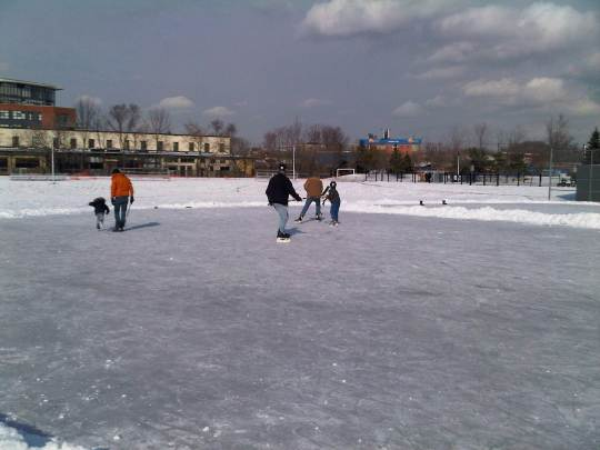 Sorauren Rink on Saturday Jan. 26, 2013