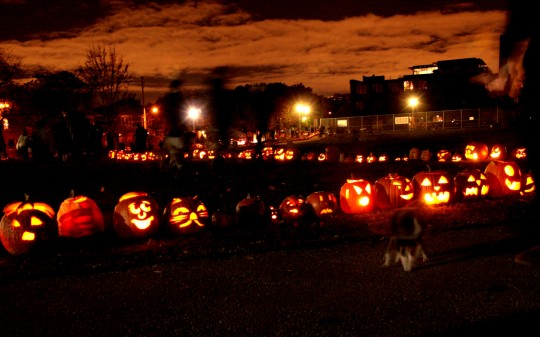 Photo of hundreds of lit jack-o-lantern pumpkins lining the path at Sorauren Avenue Park, Toronto