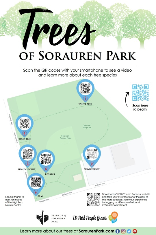 A poster with a map of Sorauren Park showing the tree locations. Visit the Sorauren Park YouTube channel for closed-captions versions of all Tree Tour videos.