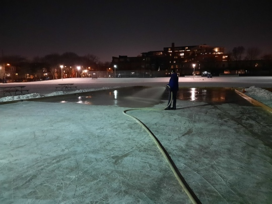 Evening scene lit by park lights, a lone man with a hose floods the natural ice rink at the park.